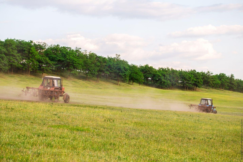 Warum die Leidenschaft für Traktoren in Deutschland so ausgeprägt ist